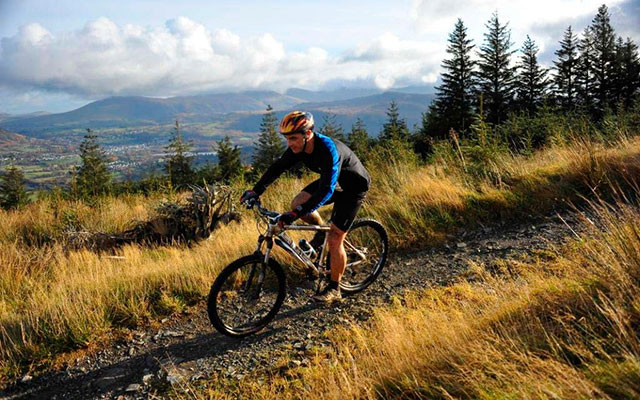 Cycling at Whinlatter Forest