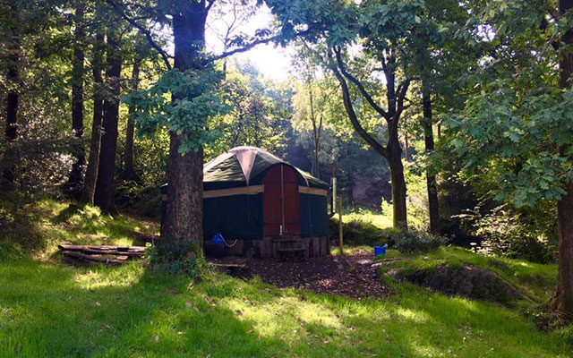 Win a two-night adventure break at Forestry England's Grizedale Forest