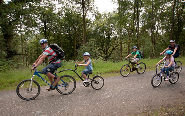 Great days out - Grizedale Forest