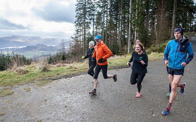 Running in Whinlatter Forest