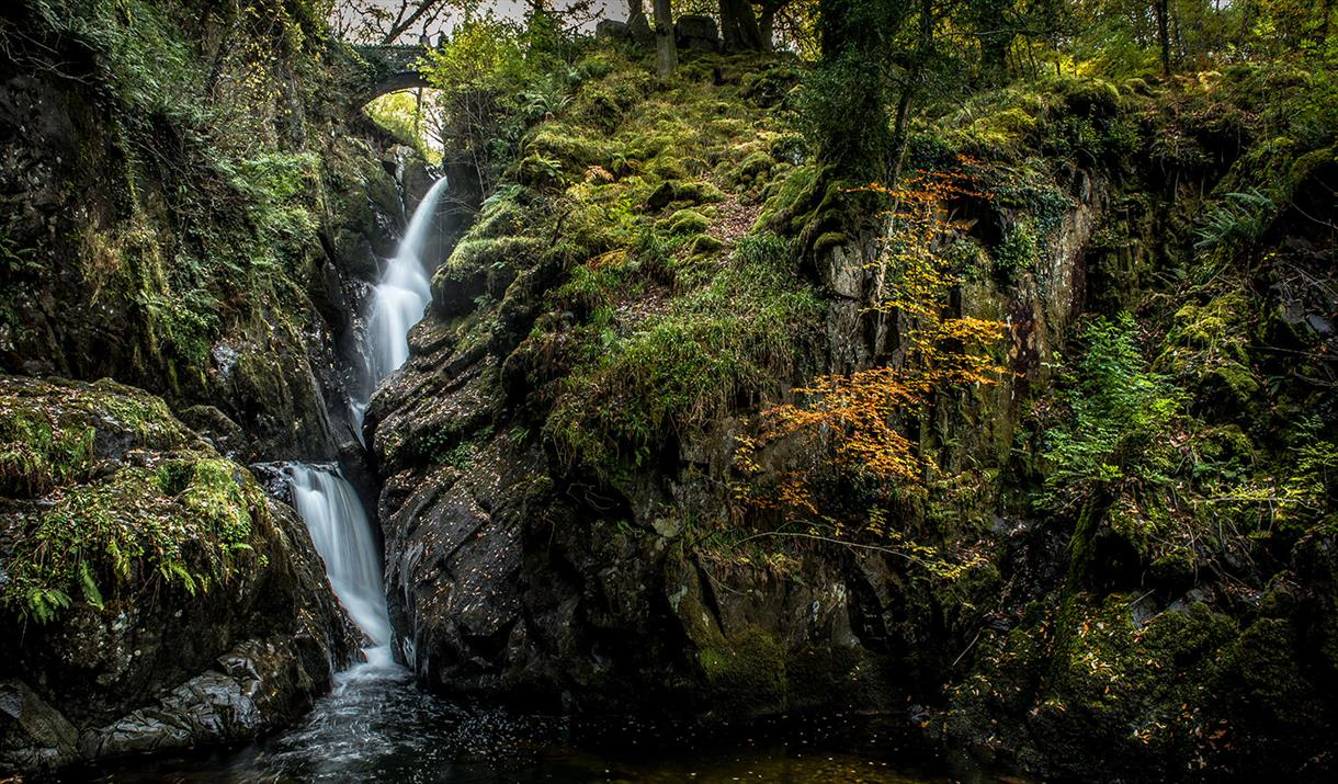 Aira Force Waterfall © National Trust Images, John Malley