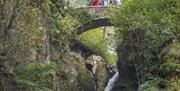 Aira Force Waterfall © National Trust Images, Stewart Smith