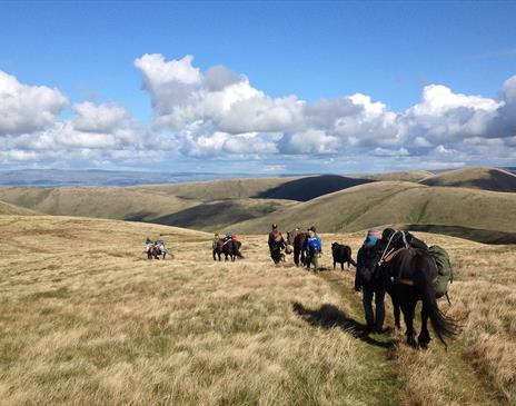 Howgills 4-Day Trek with Fell Pony Adventures