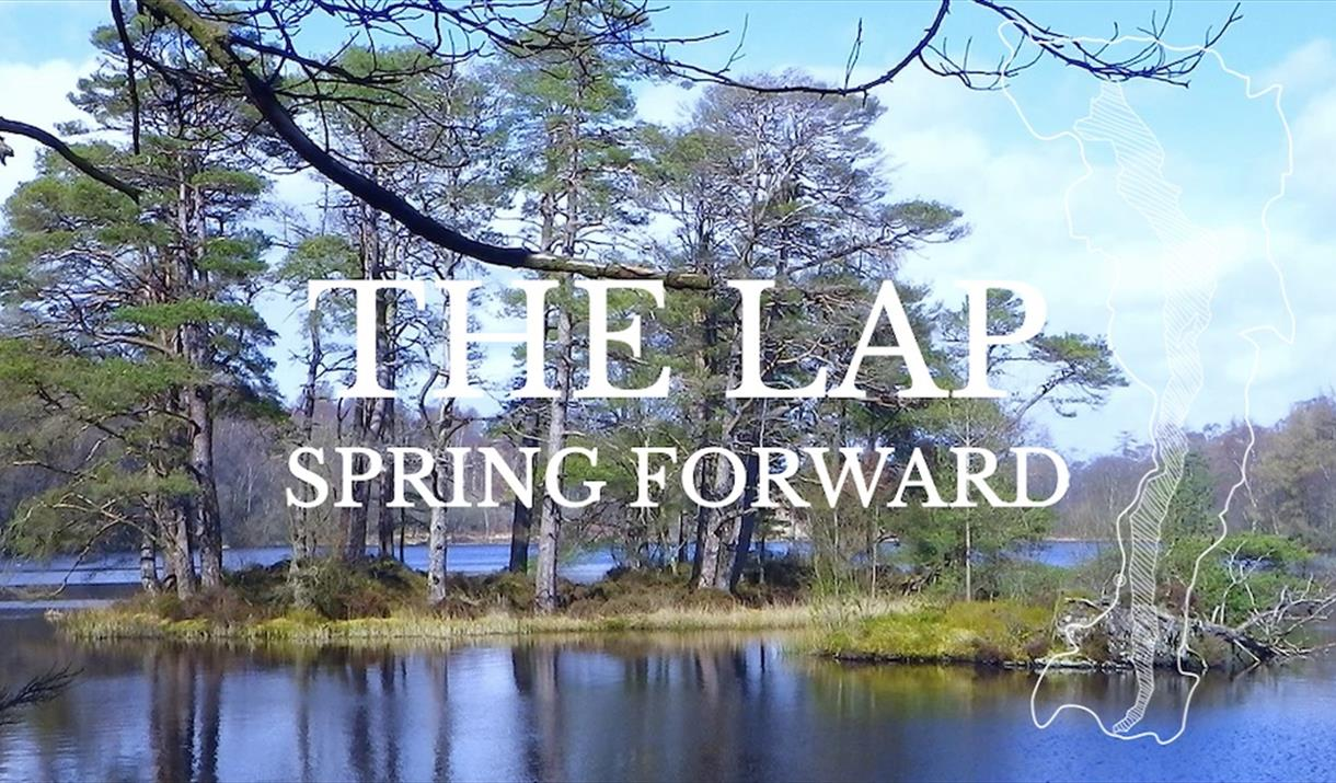THE LAP Spring Forward