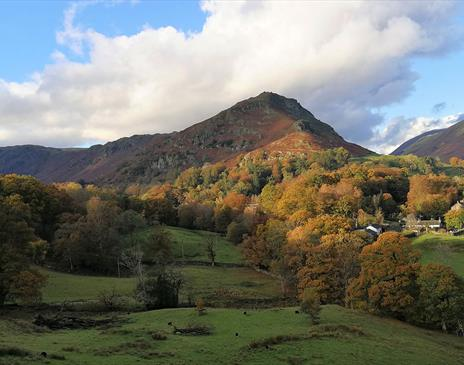 Wordsworth's Grasmere