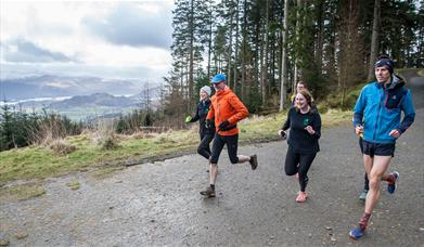 Whinlatter Running Trails