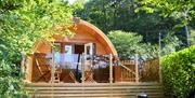 Hill of Oaks Glamping