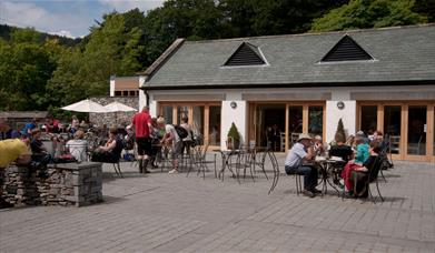 Grizedale Visitor Centre
